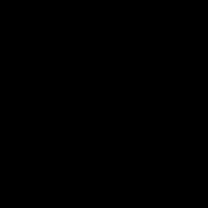 1 Ginebra - Ginebra Hayman´s Old Tom 5cl 1 PACK DE 12 UDS